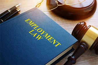 Employment Law and Litiga…