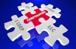 corporation Puzzle